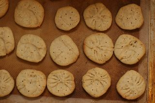 Fossil_cookies
