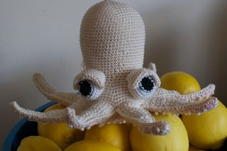 White_octopus