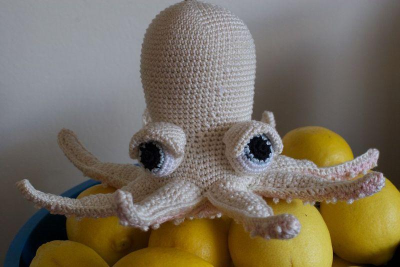 White_octopus
